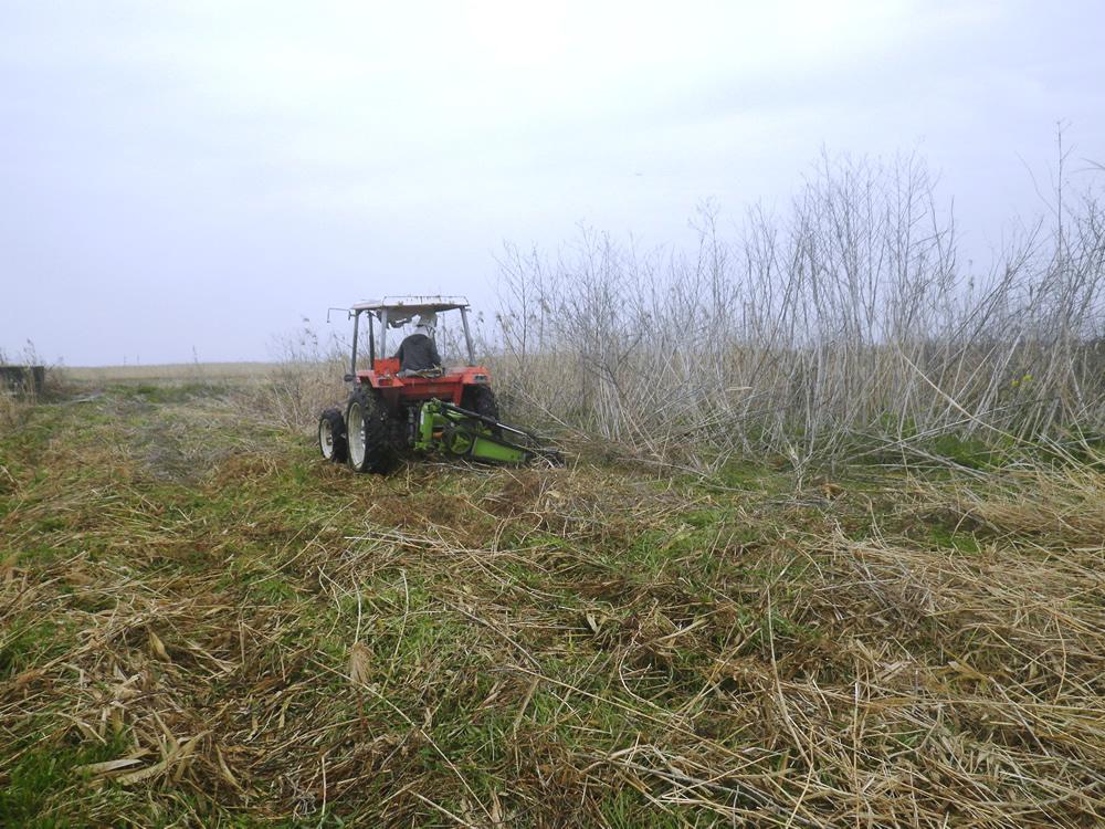 用地伐採業務委託